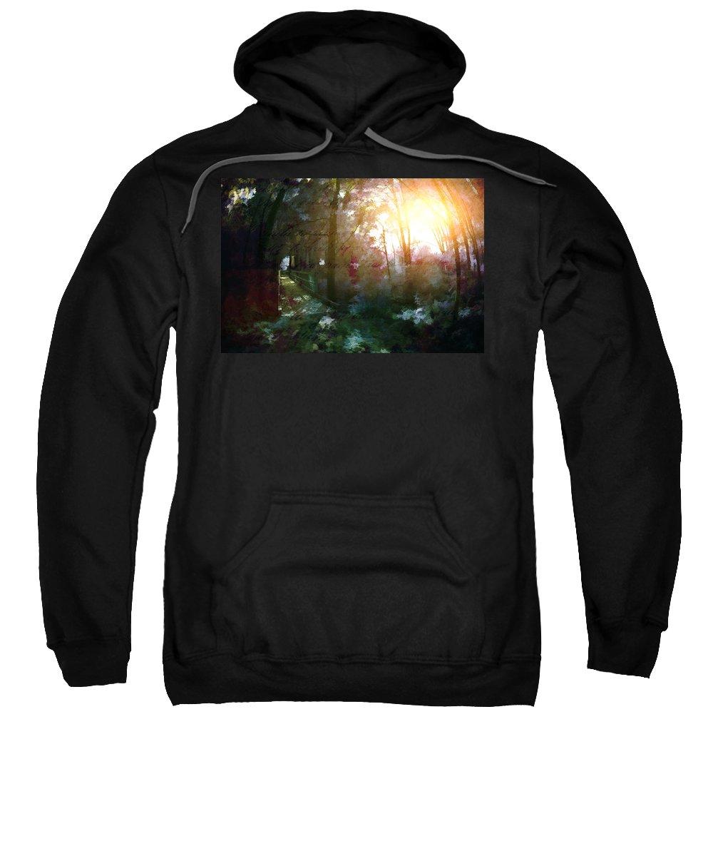 Sunshine Sweatshirt featuring the photograph Park Art II by Tina Baxter