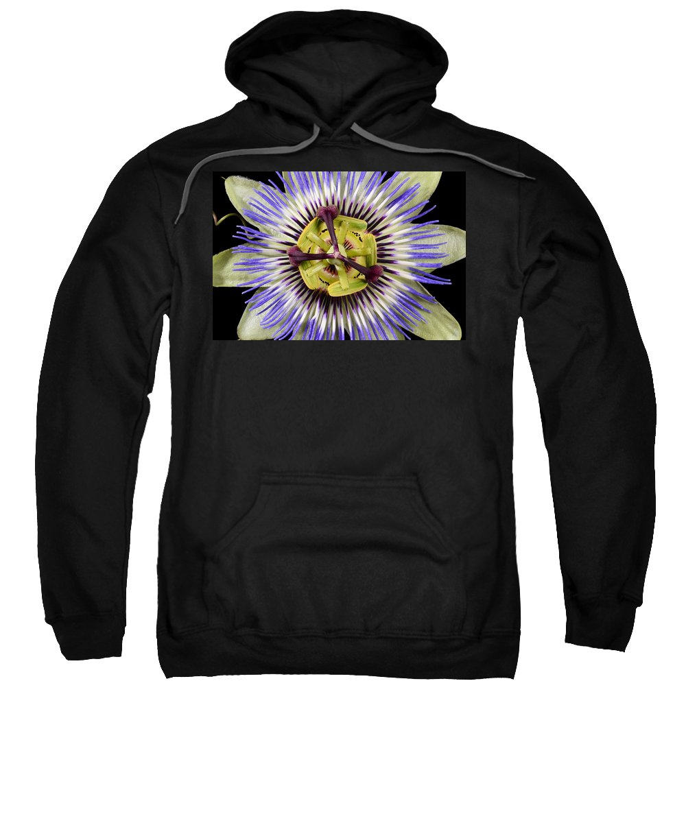 Passion Flower Sweatshirt featuring the photograph Passion Flower-0008 by Russ Greene