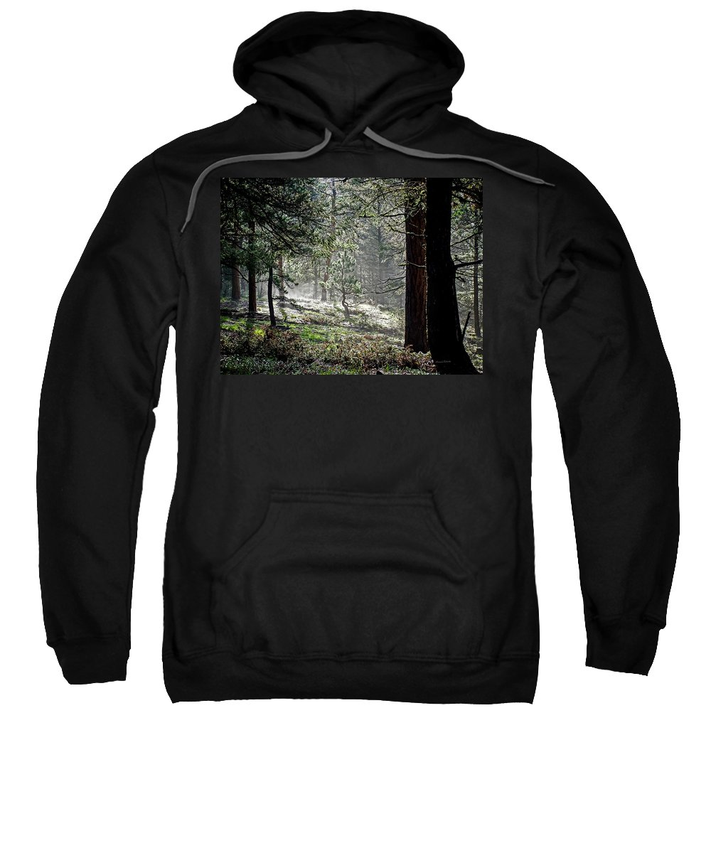Colorado Sweatshirt featuring the photograph Peaceful Morning by Ernie Echols