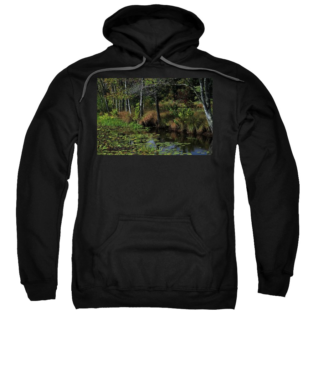 Landscape Sweatshirt featuring the photograph Peaceful Pond by Karol Livote