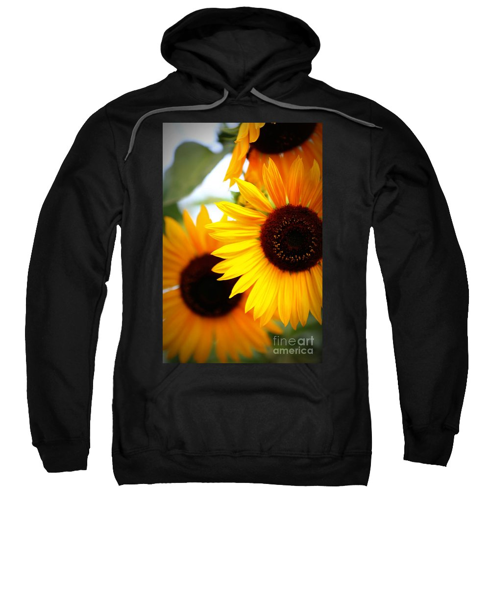 Sunflowers Sweatshirt featuring the photograph Peekaboo Sunflowers by Carol Groenen