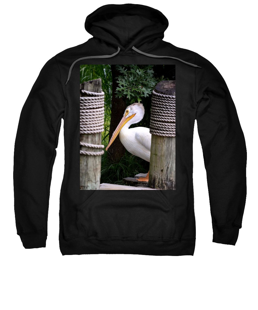 Pelican Sweatshirt featuring the photograph Pelican by Maria Urso
