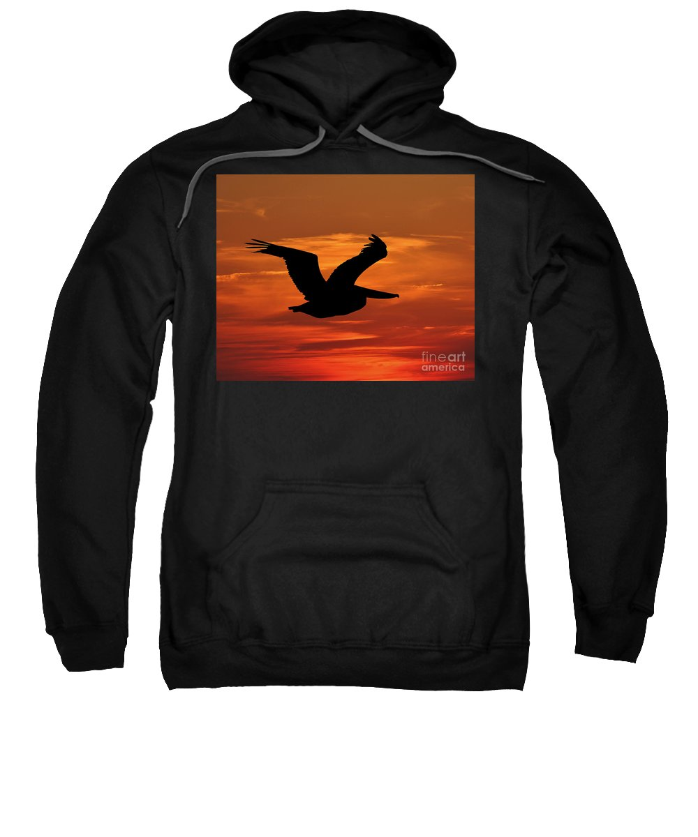 Pelican Silhouette Sweatshirt featuring the photograph Pelican Profile by Al Powell Photography USA