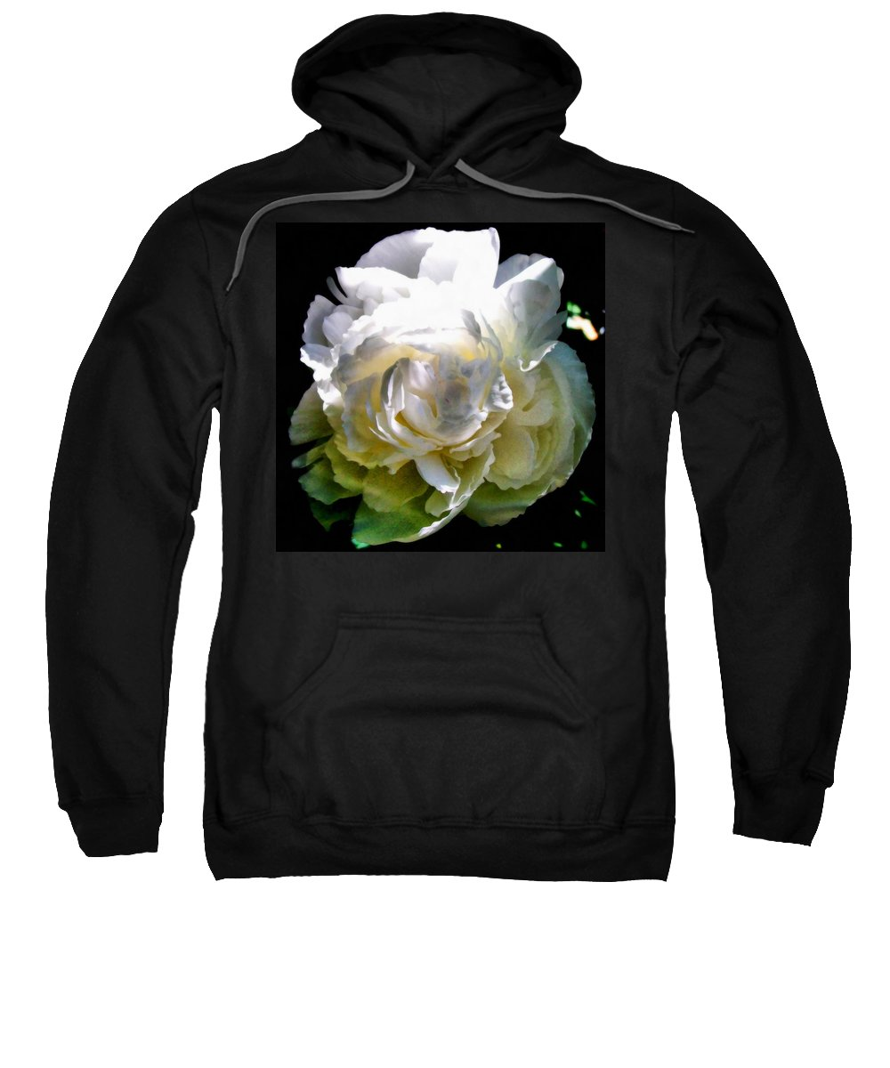 White Peony Sweatshirt featuring the photograph Peony In Morning Sun by Michelle Calkins