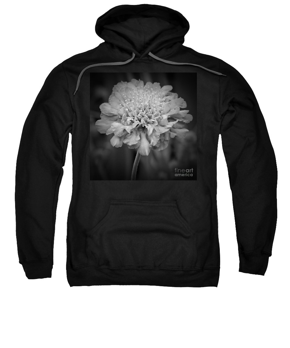 Pincusion Bw Sweatshirt featuring the photograph Pincushion Bw by Chalet Roome-Rigdon