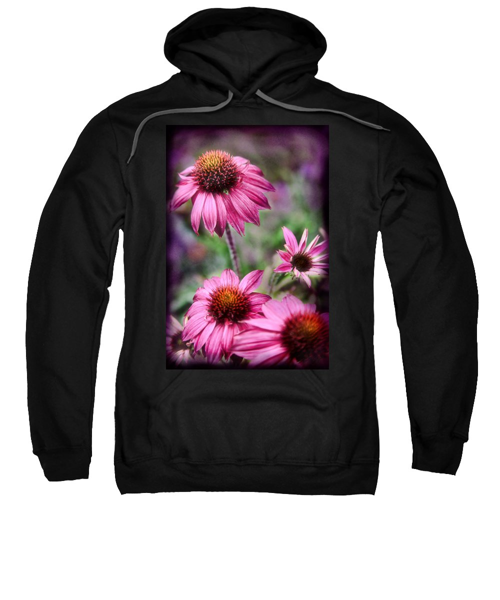 Daisies Sweatshirt featuring the photograph Pink Daisies by Sally Bauer