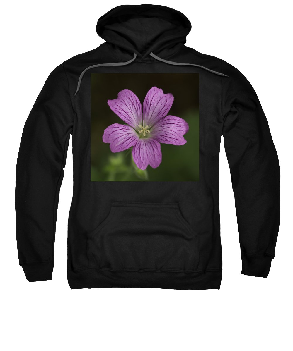 Flower Sweatshirt featuring the photograph Pink Flower by David Freuthal