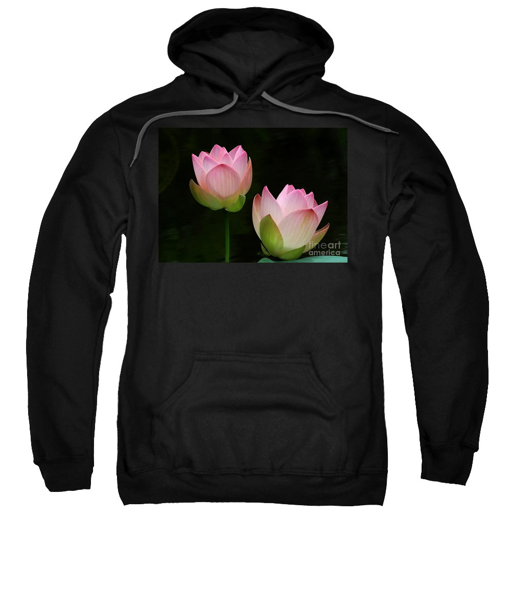 Pink Sweatshirt featuring the photograph Pink Lotus Duet by Sabrina L Ryan