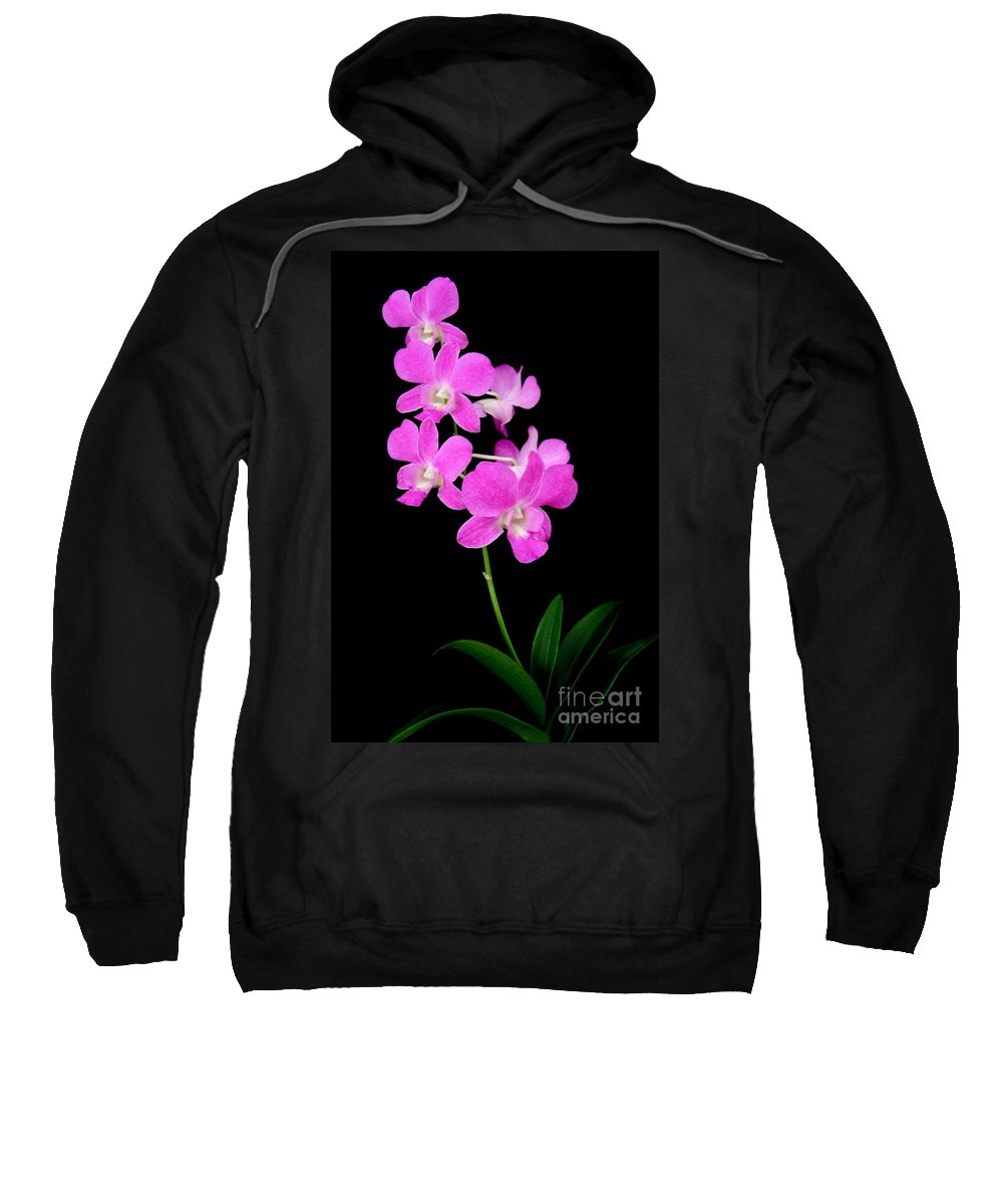 Orchid Sweatshirt featuring the photograph Pink Orchids 9 by Mary Deal