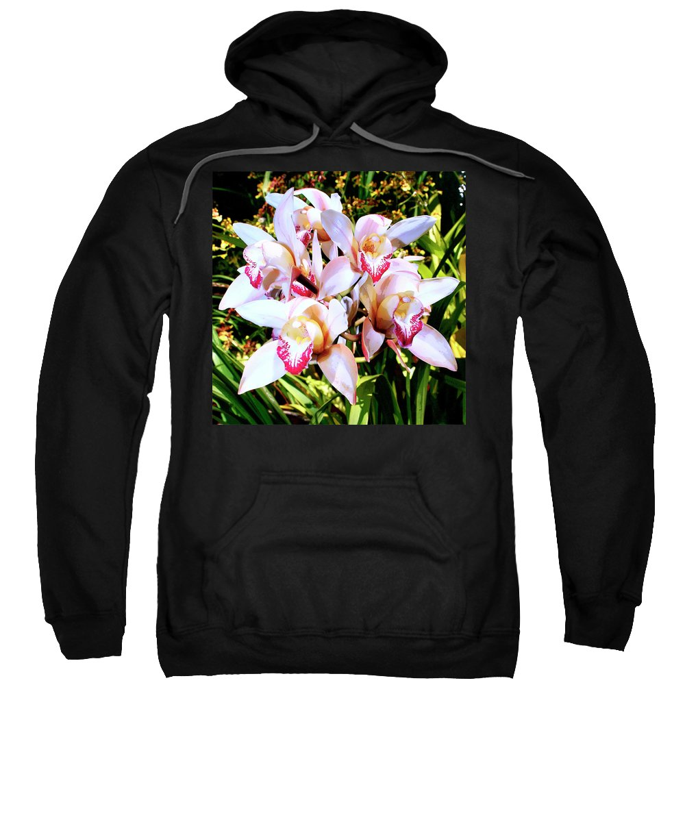Orchid Sweatshirt featuring the photograph Pink Spirit Orchids Palm Springs by William Dey