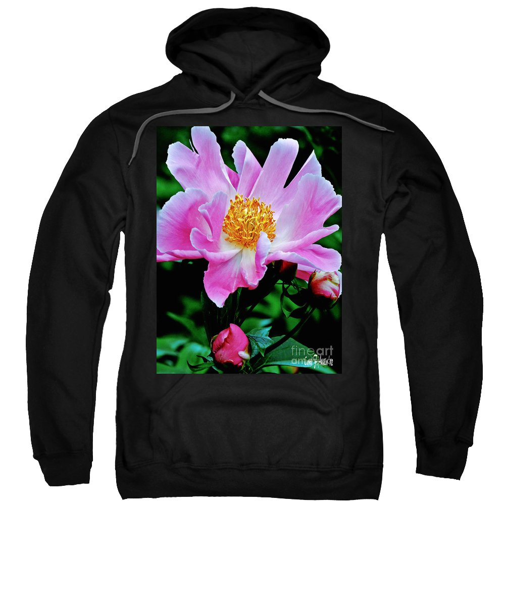 Flower Photograph Sweatshirt featuring the photograph Pink Peony Garden by Carol F Austin