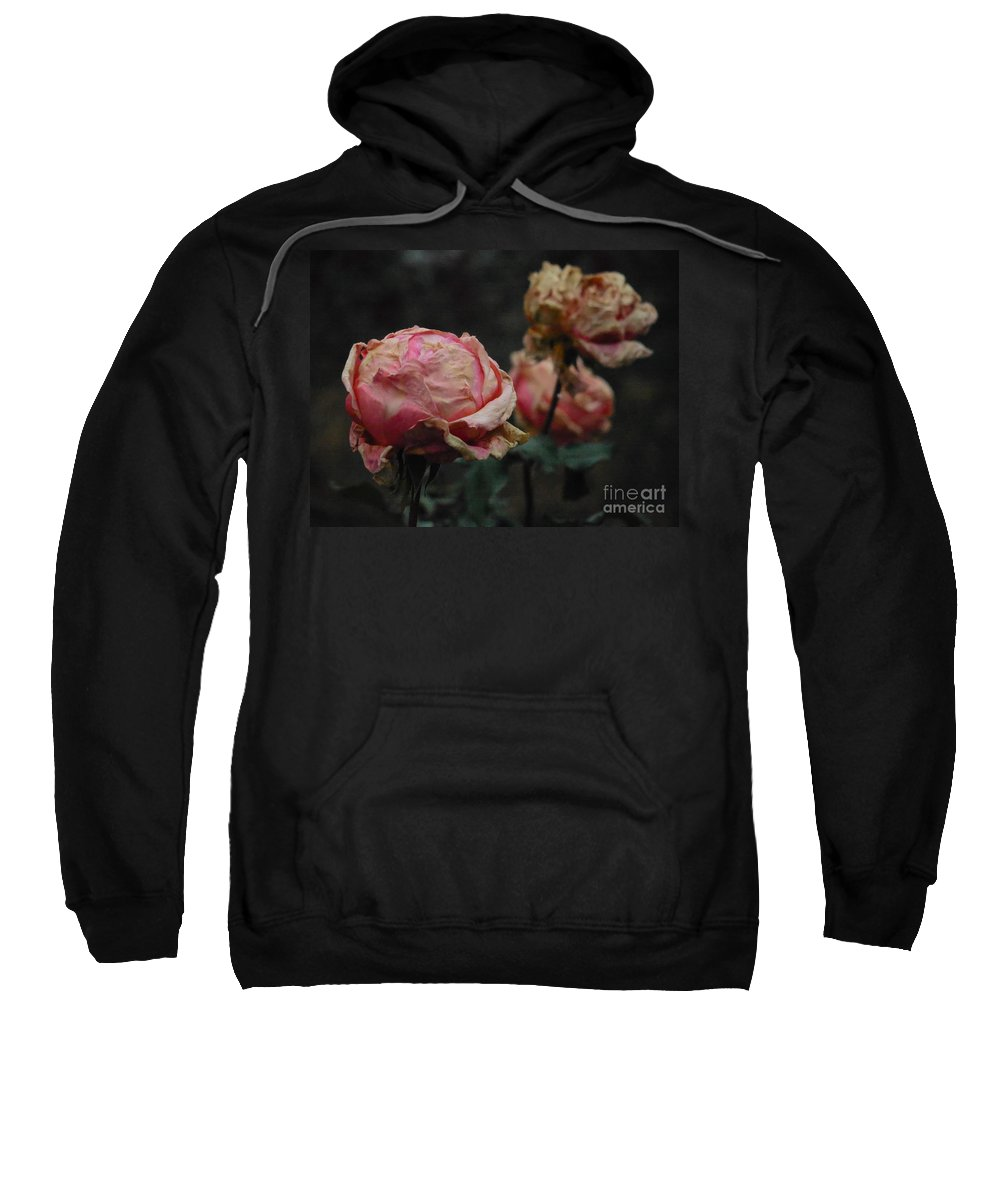 Rose Sweatshirt featuring the photograph Pink Roses In The First Snow I V by Rowena Throckmorton