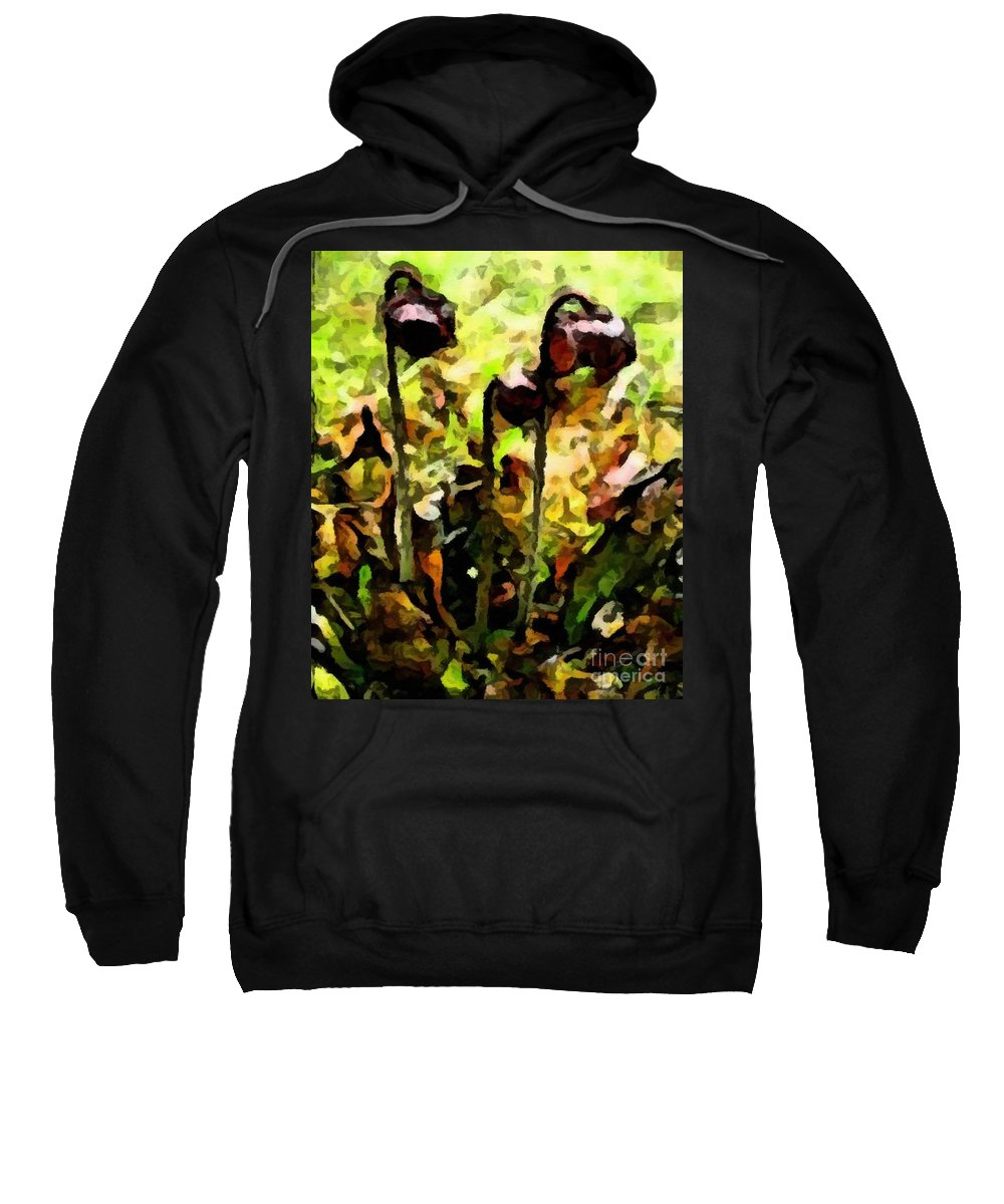 Pitcher Plant Abstraction Sweatshirt featuring the photograph Pitcher Plant Abstraction by Barbara Griffin