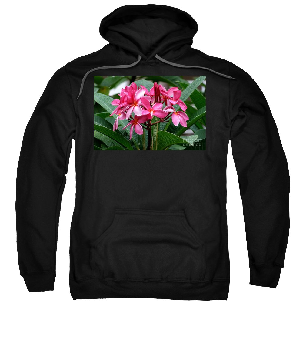 Plumeria Sweatshirt featuring the photograph Playing In The Rain by Mary Deal