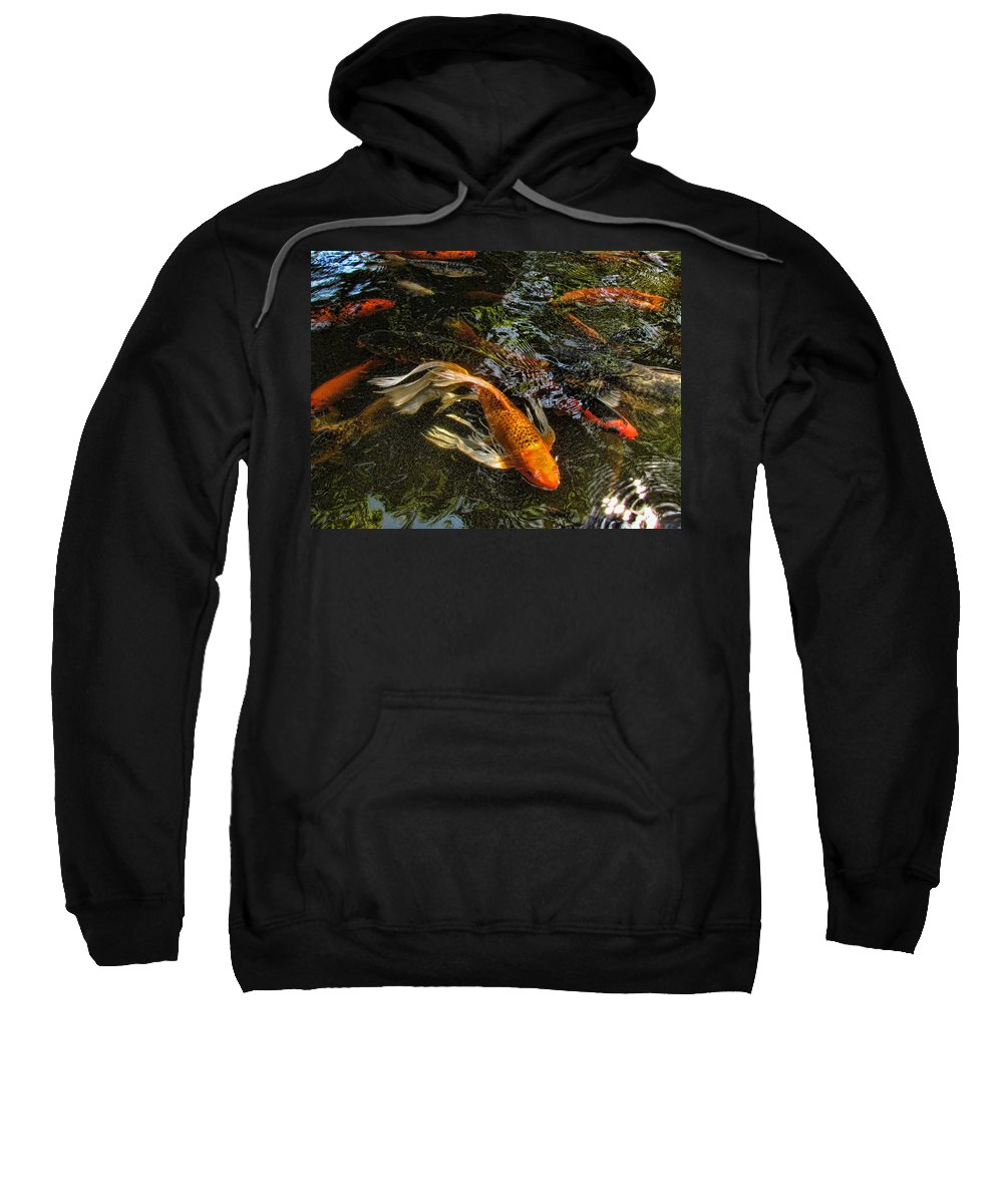 Koi Sweatshirt featuring the photograph Playing Koi With Me by Shannon Story