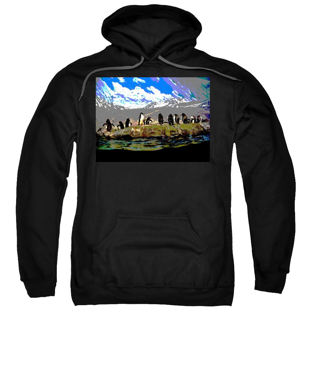 Computer Graphics Sweatshirt featuring the photograph Posterized Penguins Line Dance by Marian Bell