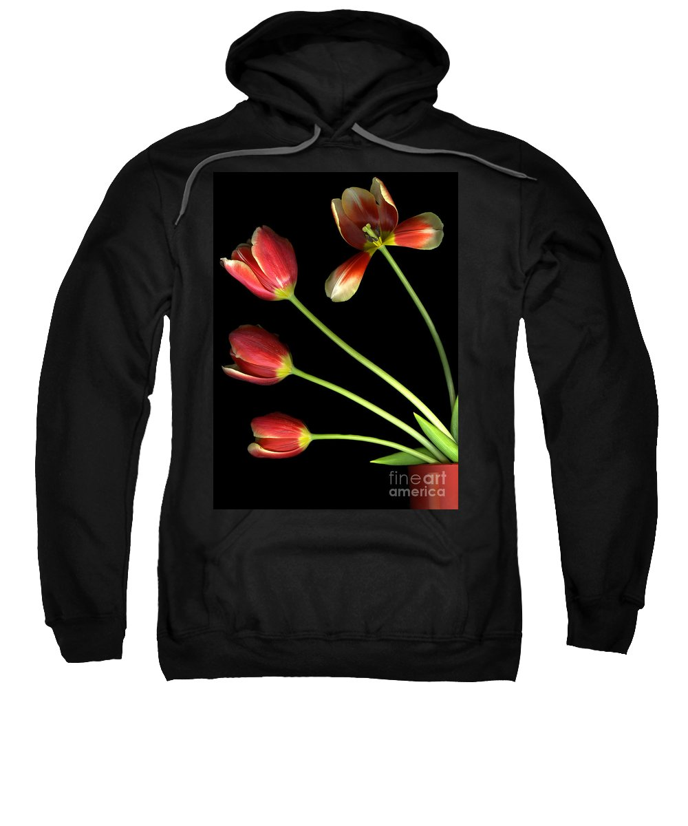 Scanography Sweatshirt featuring the photograph Pot Of Tulips by Christian Slanec