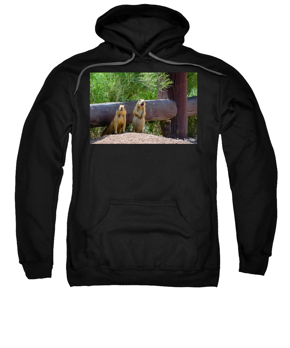 Bryce National Park Sweatshirt featuring the photograph Prairie Dogs In Bryce by Joan Wallner