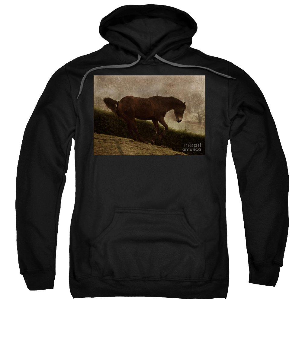 Prancing Horse Sweatshirt featuring the photograph Prancing Horse by Angel Ciesniarska
