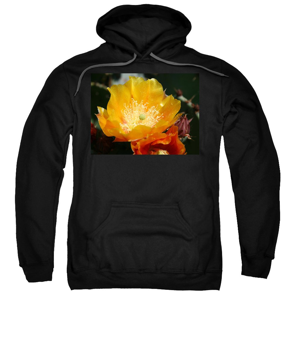 Prickly Pear Blossom Sweatshirt featuring the photograph Prickly Pear Blossom by Ellen Henneke