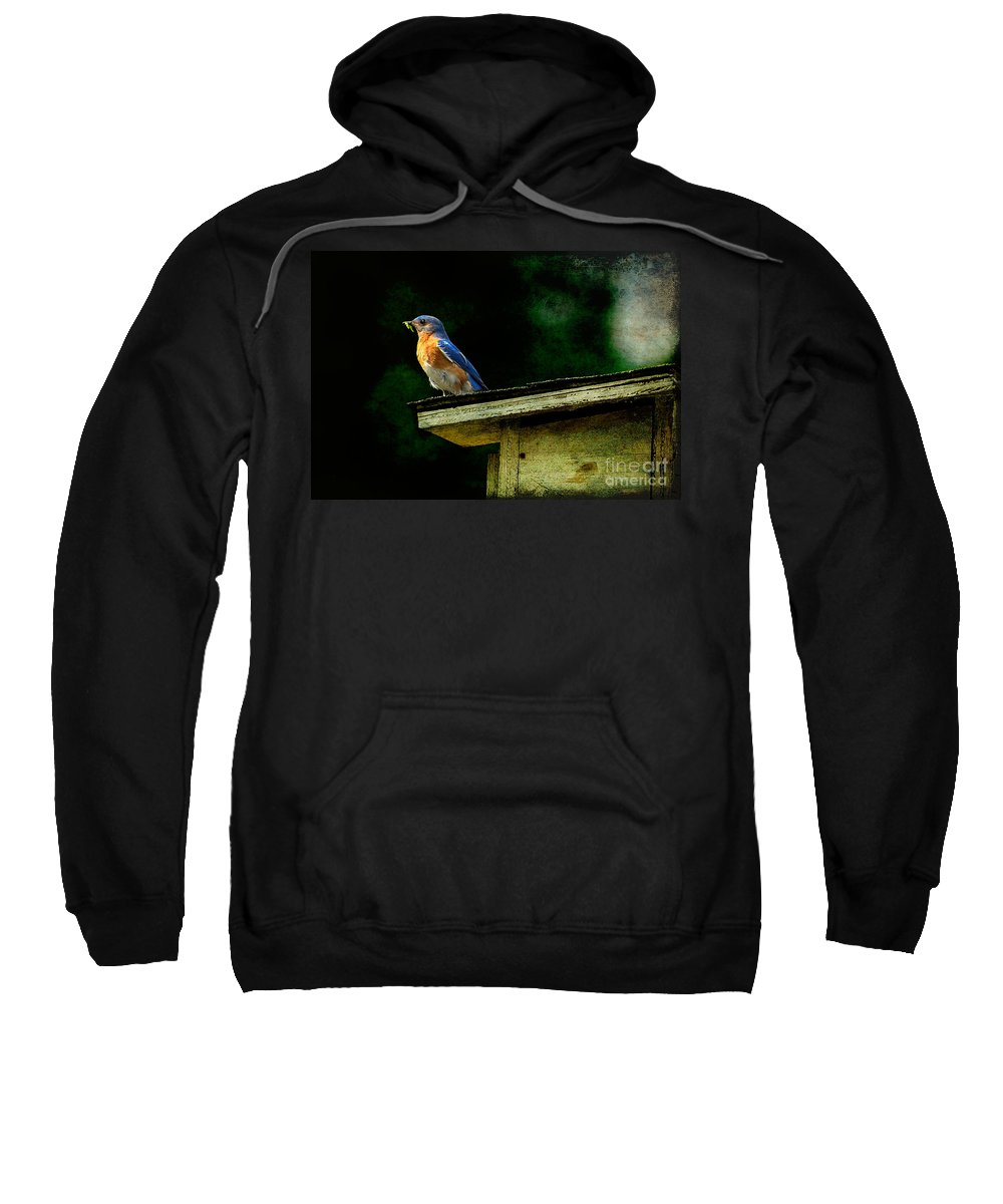 Lois Bryan Sweatshirt featuring the photograph Proud Provider by Lois Bryan