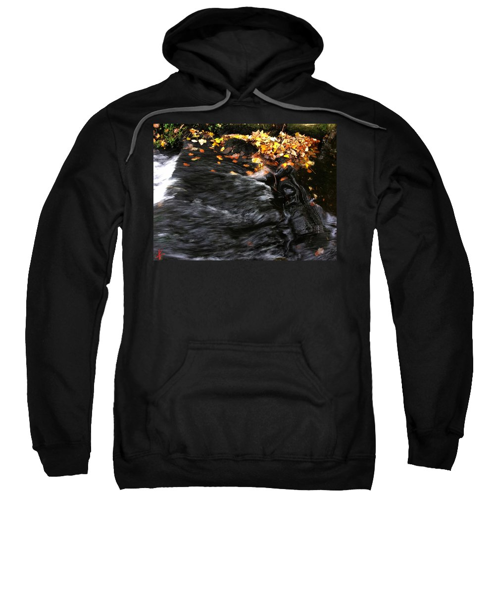 Colette Sweatshirt featuring the photograph Pure Wild Autumn Denmark by Colette V Hera Guggenheim