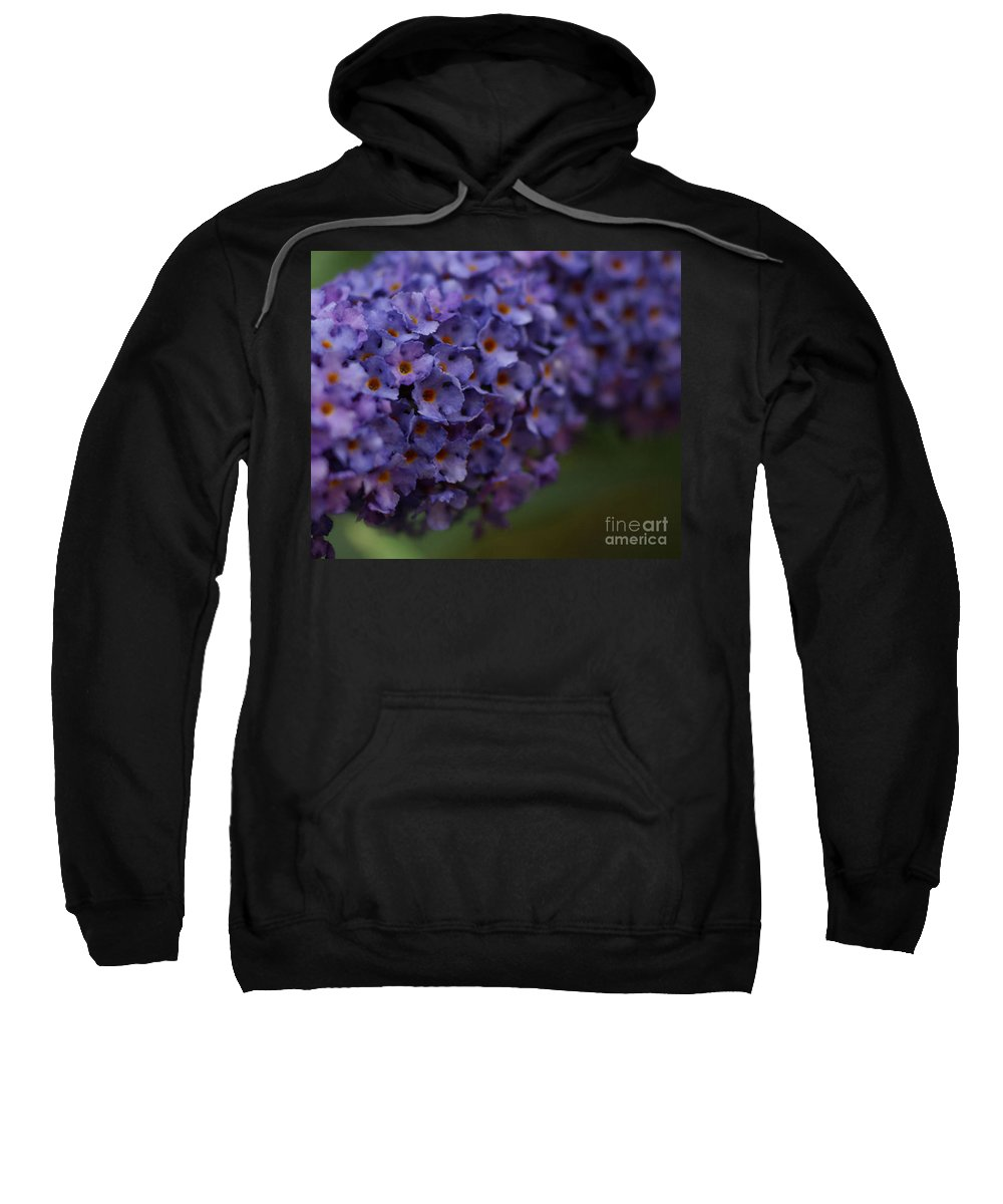Purple Sweatshirt featuring the photograph Purple Flowers 1 by Carol Lynch