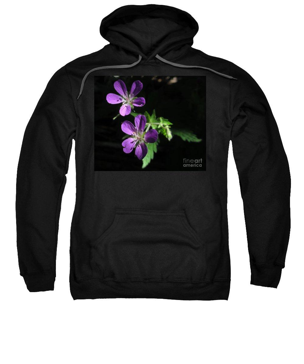 Purple Sweatshirt featuring the photograph Purple Highlights by Martin Howard