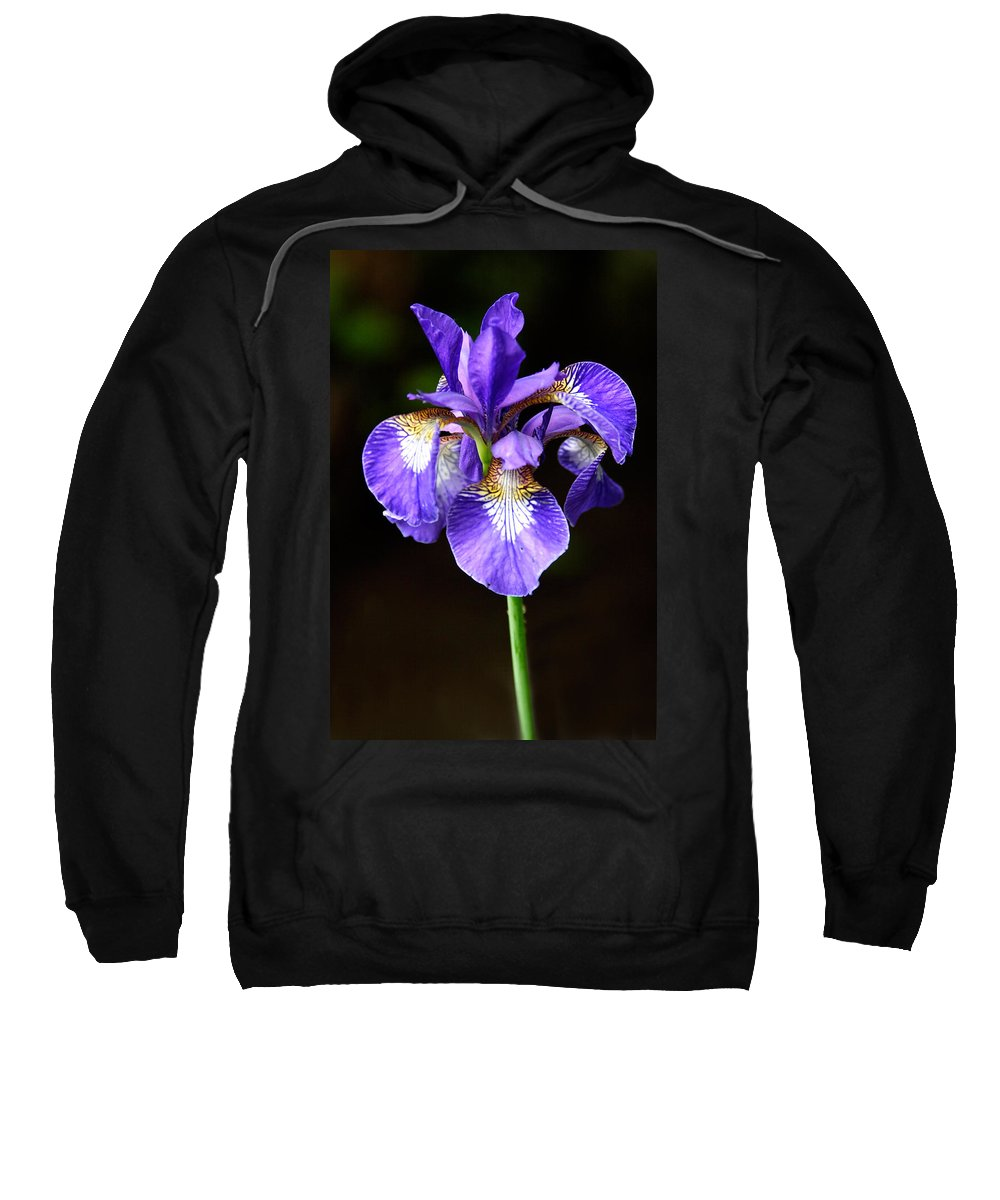 3scape Sweatshirt featuring the photograph Purple Iris by Adam Romanowicz