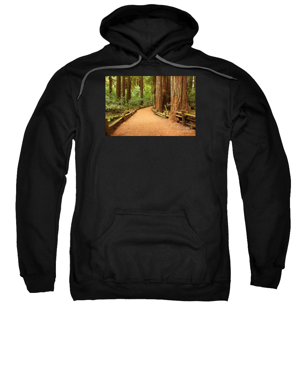 Forest Sweatshirt featuring the photograph Quiet Forest by Gang Liu