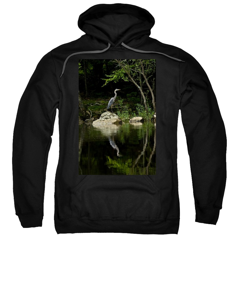 Blue Heron Sweatshirt featuring the photograph Quiet Waters by Brent L Ander