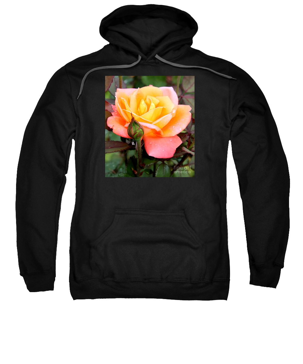 Rose Sweatshirt featuring the photograph Raindrops On My Love by Christiane Schulze Art And Photography