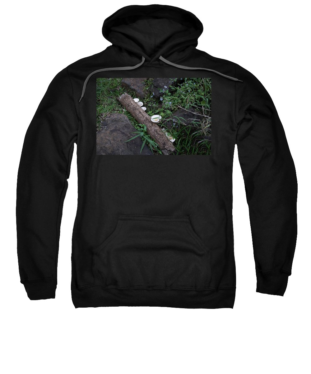 Australia Queensland Qld Sweatshirt featuring the digital art Rainforest Vegetation Moss And Fungi by Carol Ailles