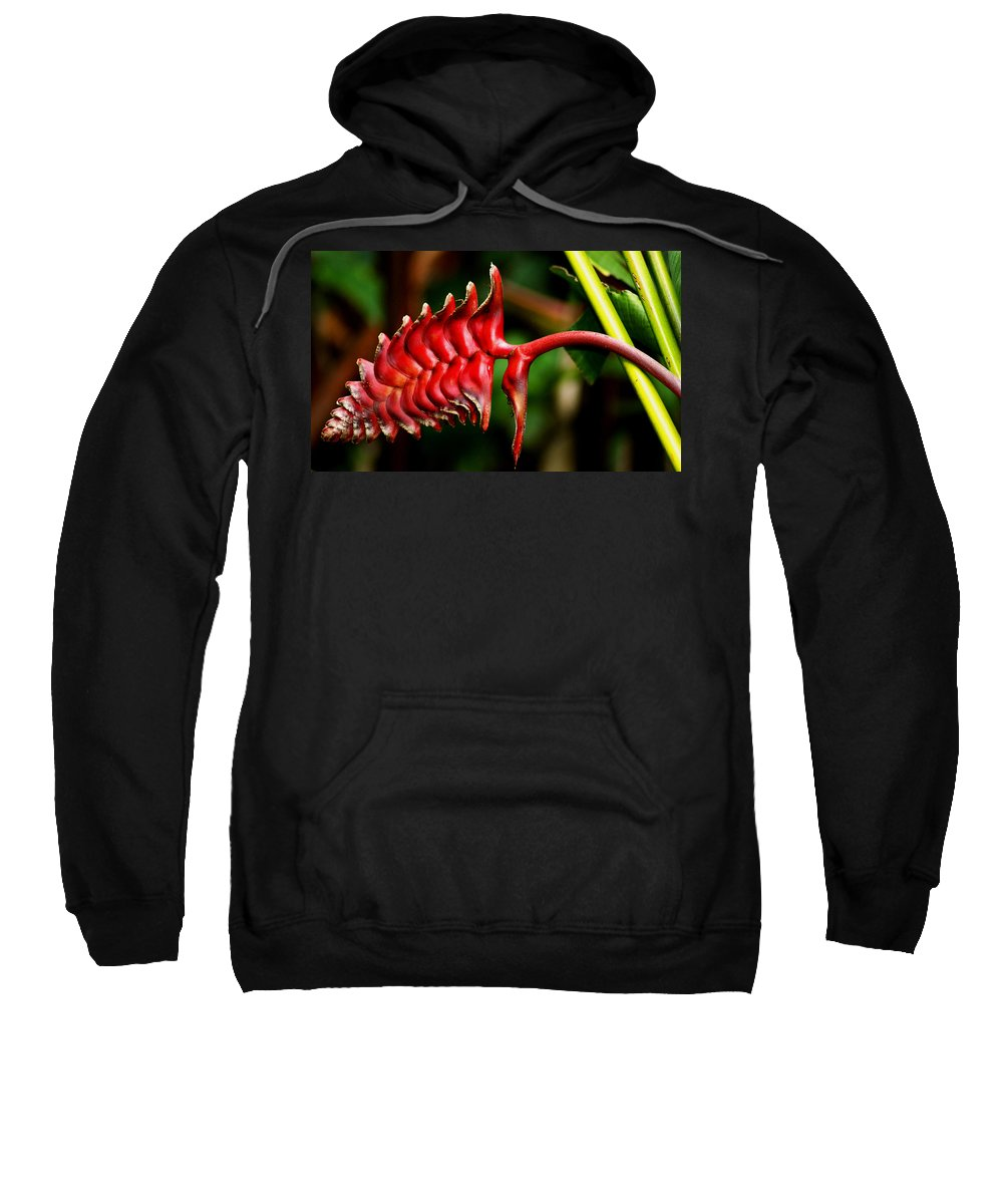 Flower Sweatshirt featuring the photograph Red Scales by Brian Kerls