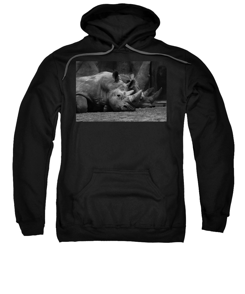 Black And White Sweatshirt featuring the photograph Rhinos by David Andersen