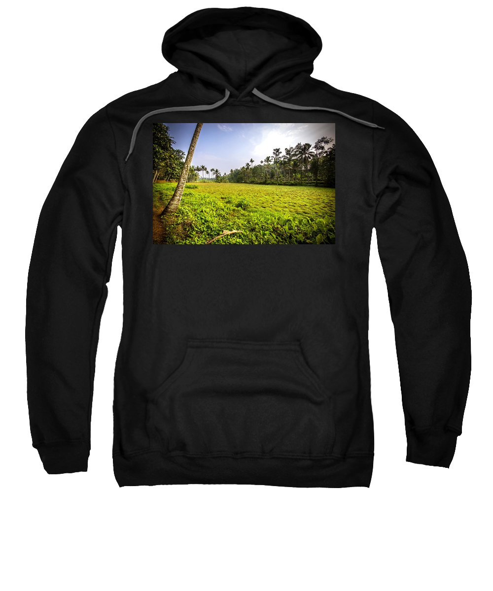 Kerala Sweatshirt featuring the photograph Rice Field by Jijo George