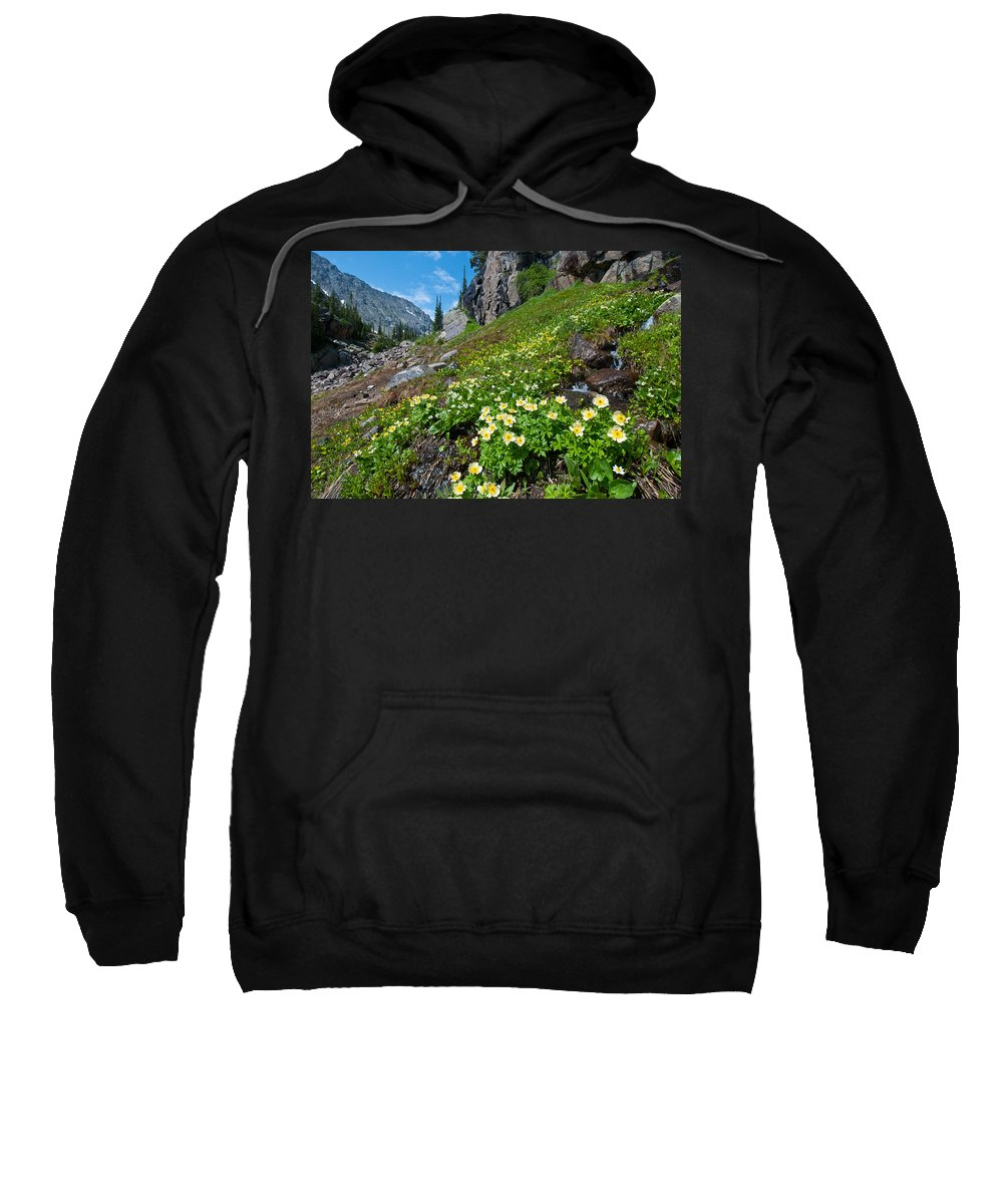 Photograph Sweatshirt featuring the photograph Rocky Mountain Summer Landscape by Cascade Colors