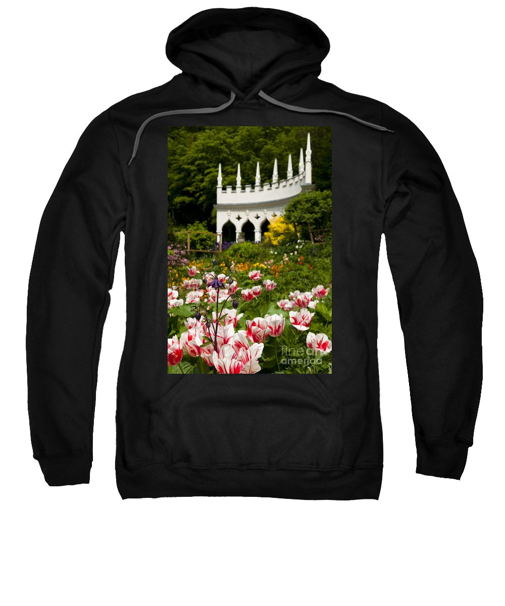 Aquilegia Sweatshirt featuring the photograph Rococo Spring by Anne Gilbert