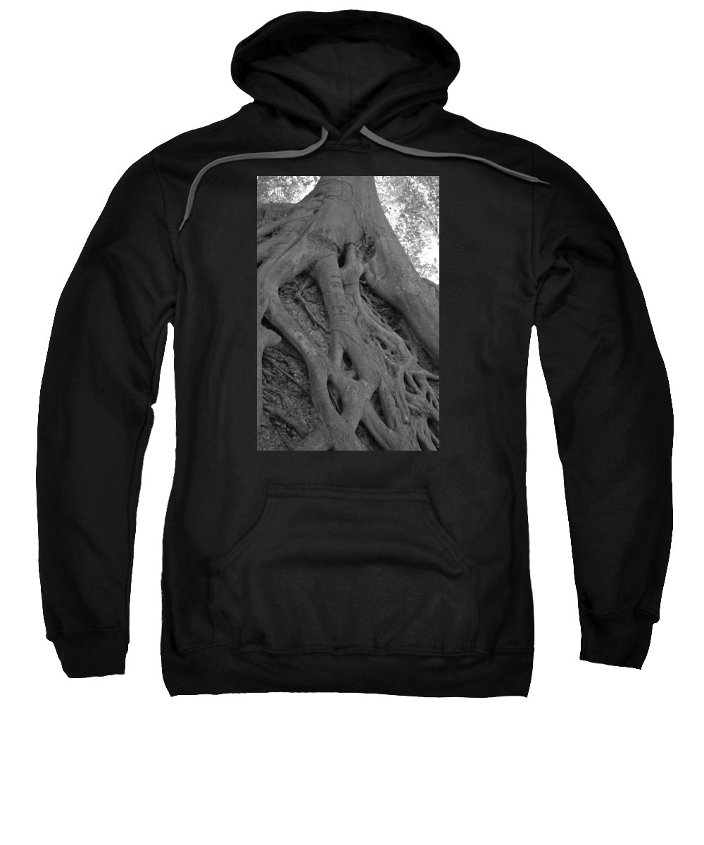 Tree Sweatshirt featuring the photograph Roots II by Suzanne Gaff