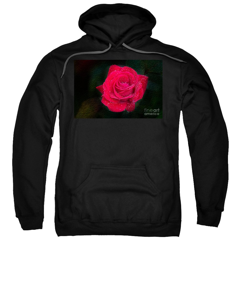 Macro Sweatshirt featuring the photograph Rose by Bernd Laeschke