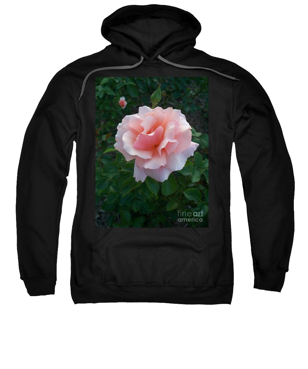 Pink Sweatshirt featuring the photograph Rose by Eric Schiabor