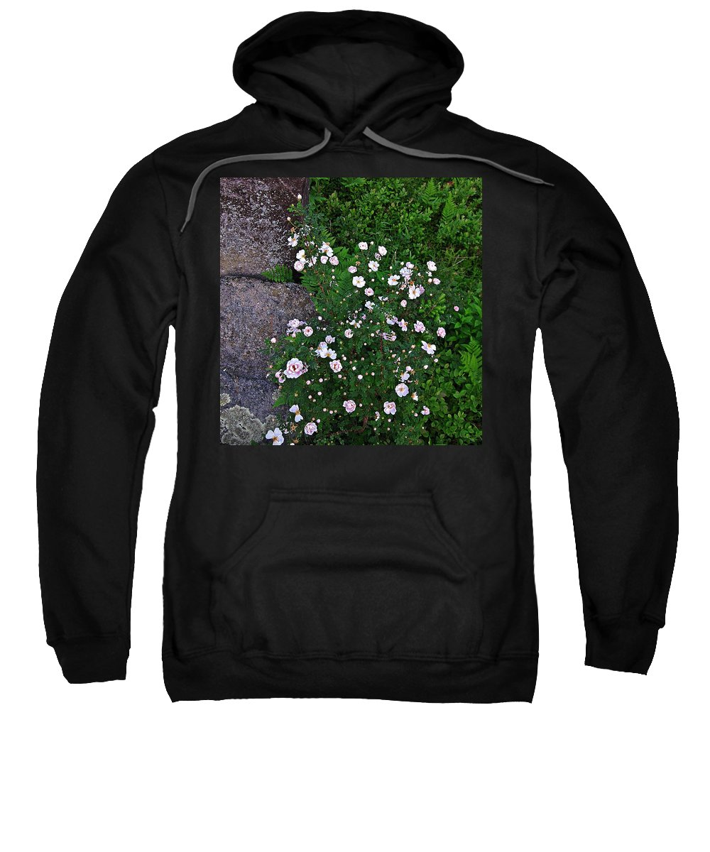 Roses Sweatshirt featuring the photograph Rosy Rock by MTBobbins Photography