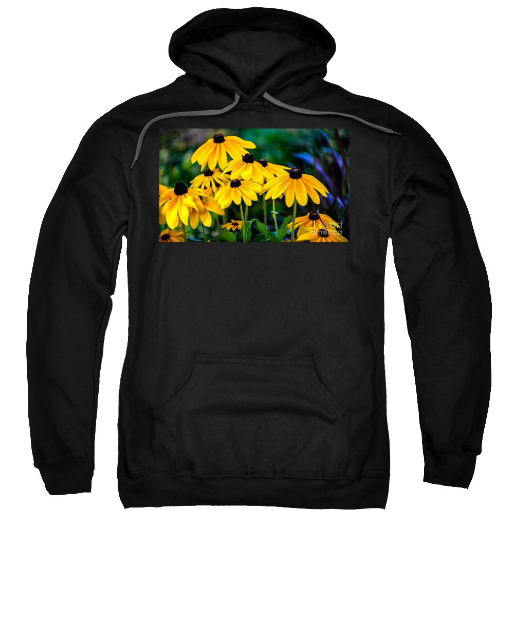 Flower Sweatshirt featuring the photograph Rudbeckia Hirta by Dale Powell