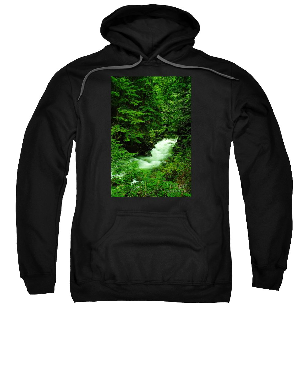 Water Sweatshirt featuring the photograph Running Through The Forest by Jeff Swan