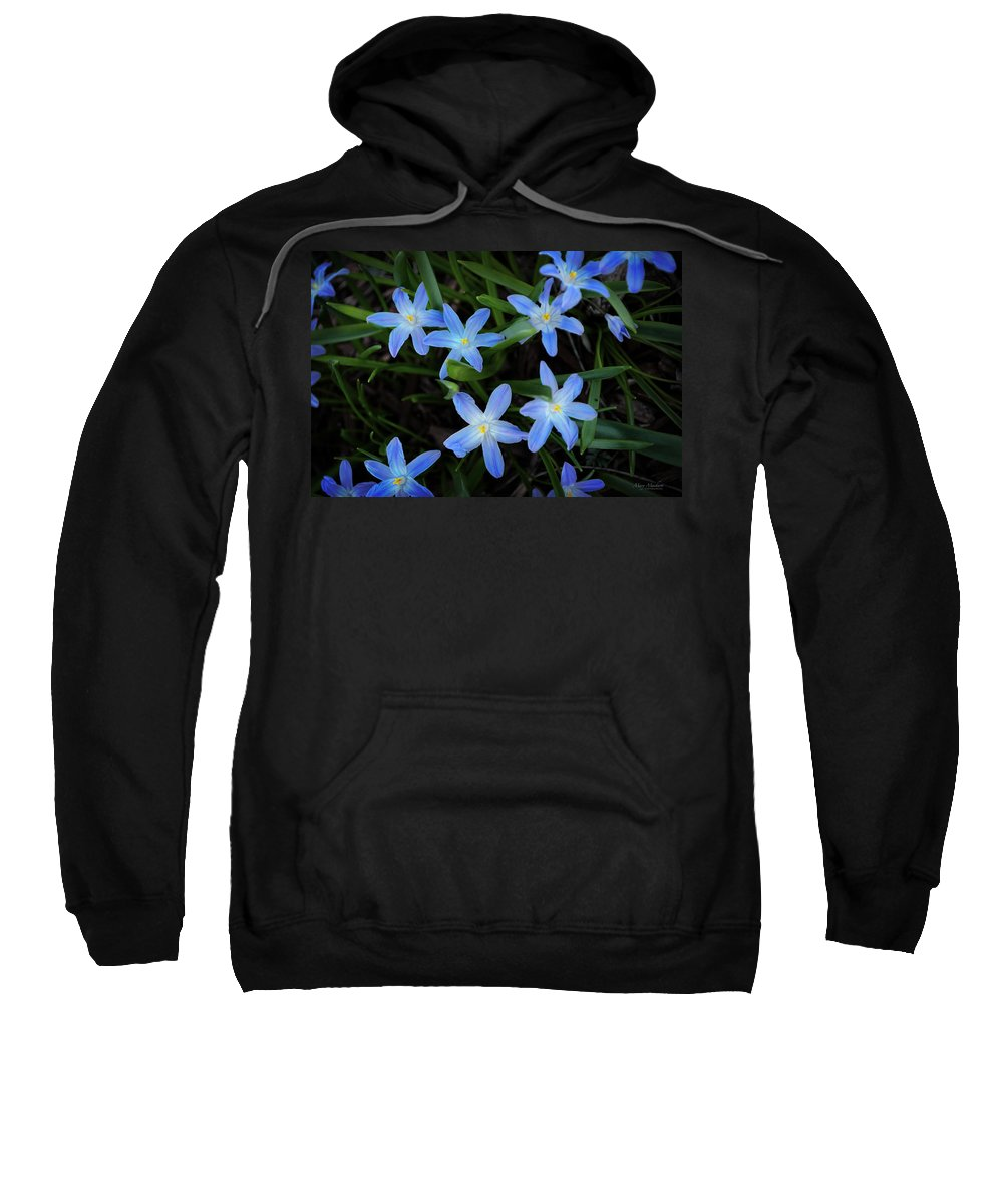 Scilla Flowers In The Morning Sweatshirt featuring the photograph Scilla Flowers In The Morning by Mary Machare