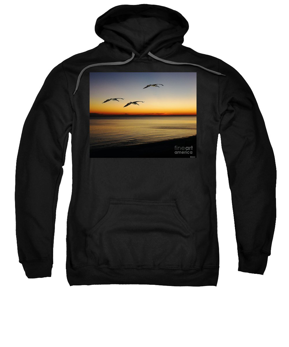 Pelicans Sweatshirt featuring the photograph Sea Cruisers by Lizi Beard-Ward
