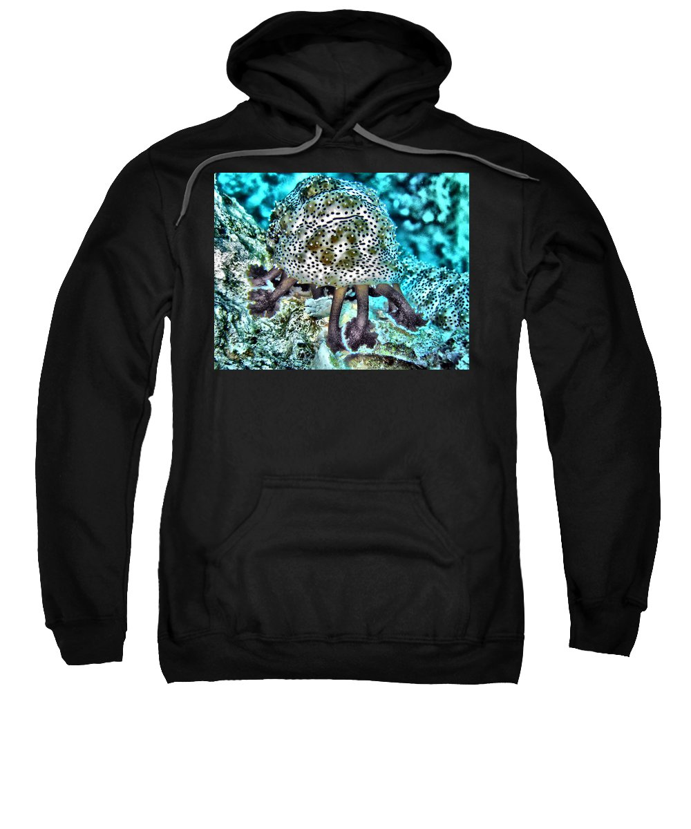 Abstract Sweatshirt featuring the digital art Sea Cucumber by Roy Pedersen