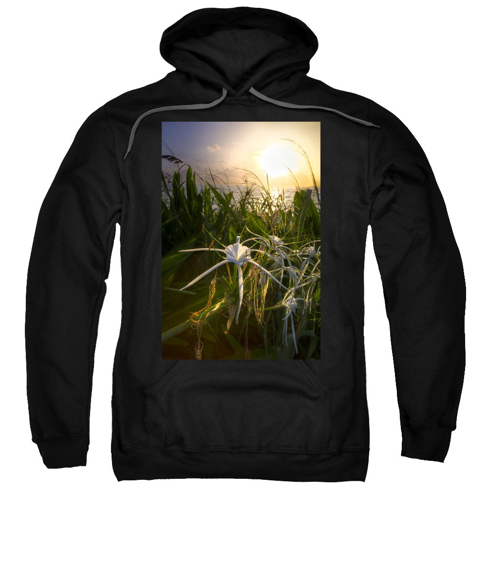 Clouds Sweatshirt featuring the photograph Sea Lily by Debra and Dave Vanderlaan