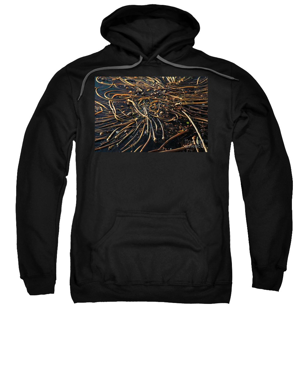 Port Angeles Sweatshirt featuring the photograph Seaweed Swamp by Adam Jewell