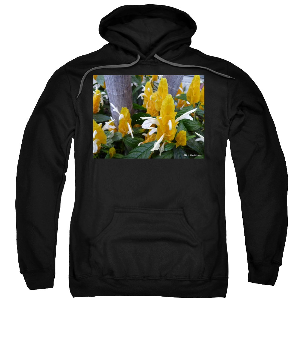 Flower Macro Sweatshirt featuring the photograph Secrets Of The Marching Shrimps by Lingfai Leung